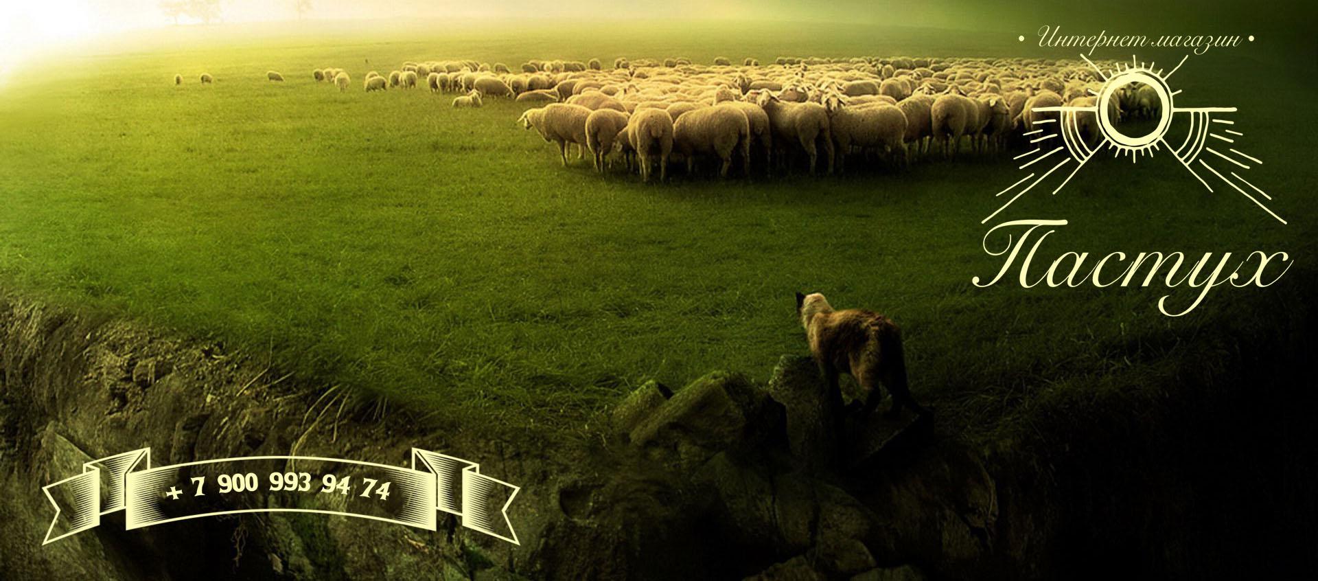 www.psk-pastux.ru